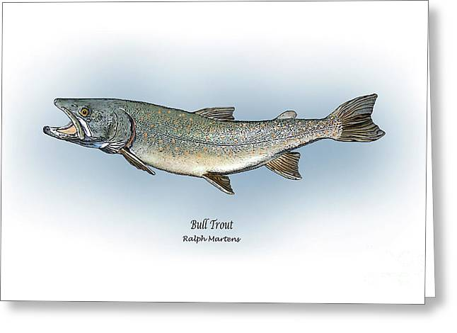 Fish Print Greeting Cards - Bull Trout Greeting Card by Ralph Martens