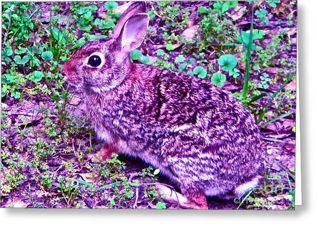 Bunnies On The Move Greeting Card by Chuck Taylor