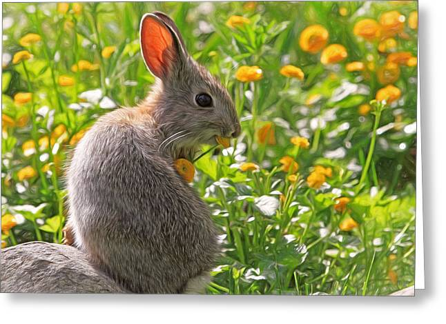 Canon 7d Greeting Cards - Bunny Brunch Greeting Card by Donna Kennedy