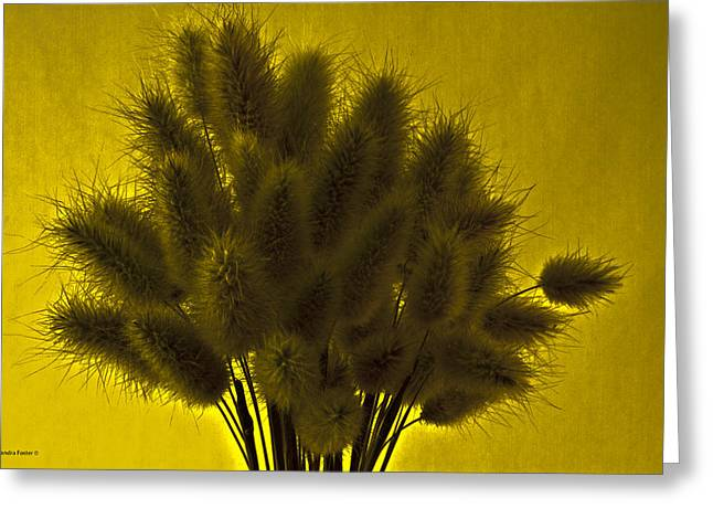 Interior Still Life Greeting Cards - Bunny Tail Grasses Greeting Card by Sandra Foster