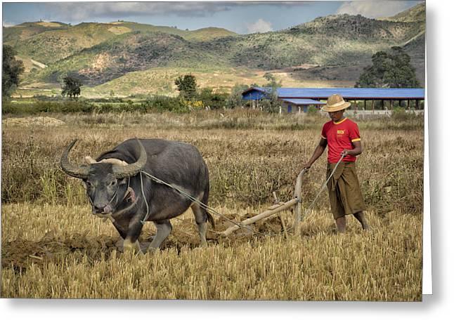 Manual Greeting Cards - Burma Farmer Greeting Card by Dan Leffel