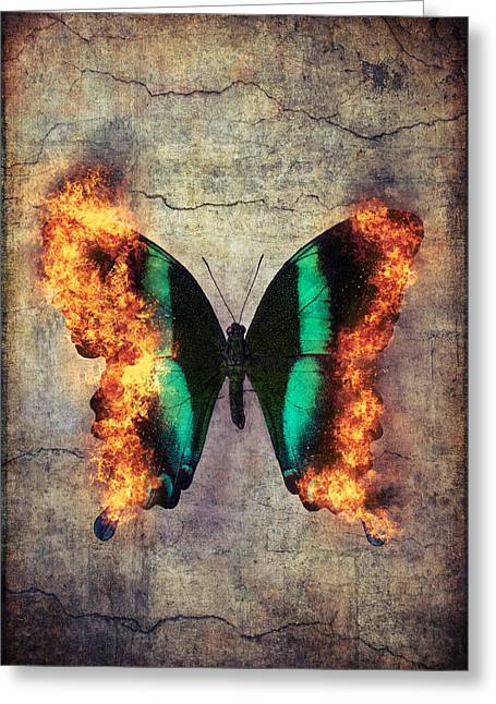 Burning Butterfly Greeting Card by Garry Gay