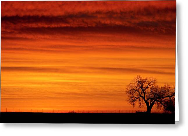 Sunset Prints Greeting Cards - Burning Country Sky Greeting Card by James BO  Insogna