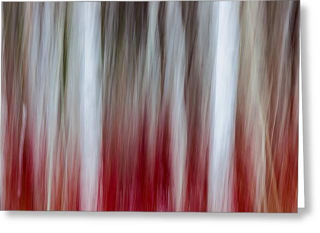 Burning Trees Greeting Card by Thorsten Scheuermann