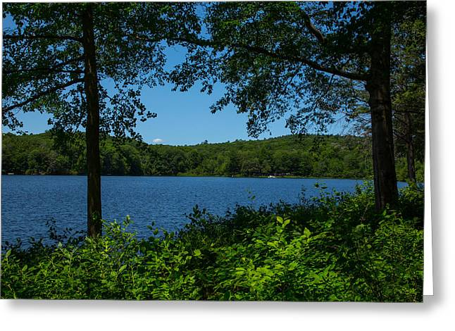 Blue And Green Greeting Cards - Burr Pond Greeting Card by Karol  Livote