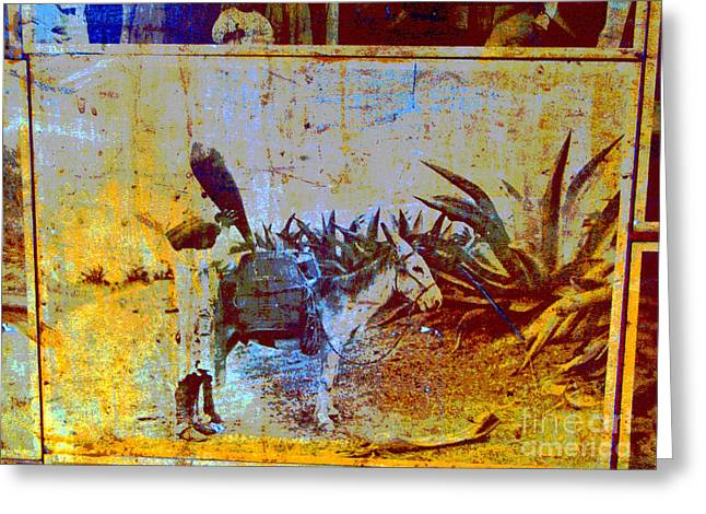 Burro by Michael Fitzpatrick Greeting Card by Olden Mexico