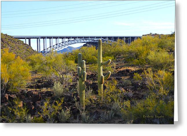 Burros Greeting Cards - Burro Creek Bridge  Greeting Card by Barbara Snyder