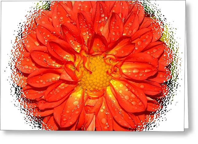 Purchase Greeting Cards - Burst of Color Greeting Card by Patrick Witz