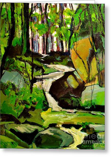Respite Greeting Cards - Bursting Creek in Maconaquah Park Greeting Card by Charlie Spear