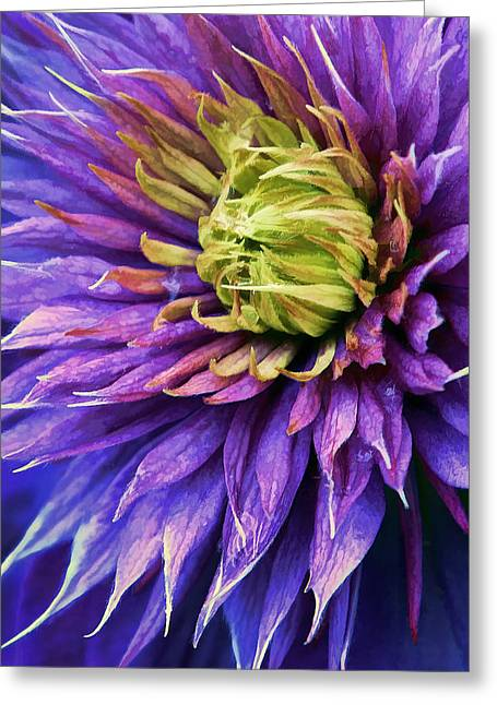 Floral Digital Art Greeting Cards - Bursting  Greeting Card by Marcia Colelli