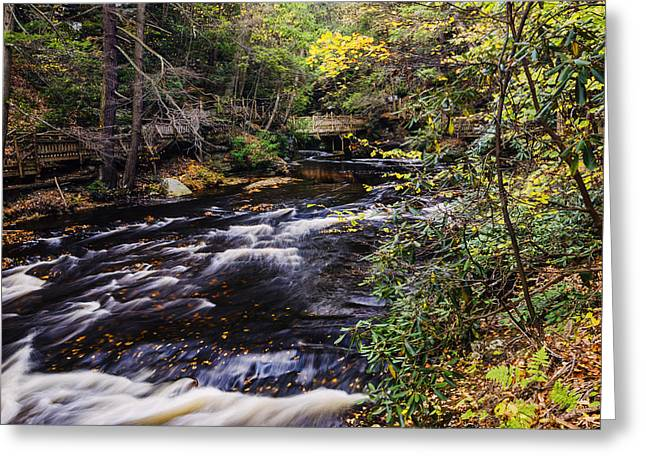 Overcast Day Greeting Cards - Bushkill Falls State Park Autumn Pennsylvania USA Greeting Card by Vishwanath Bhat