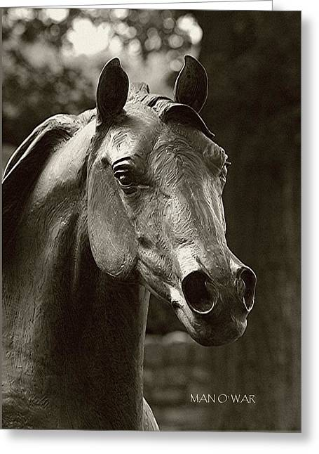 Kentucky Horse Park Digital Art Greeting Cards - Bust of Man O War 3 - Kentucky Horse Park Greeting Card by Thia Stover