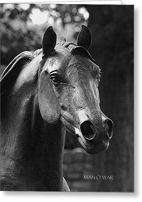 Kentucky Horse Park Digital Art Greeting Cards - Bust of Man O War 2 - Kentucky Horse Park Greeting Card by Thia Stover