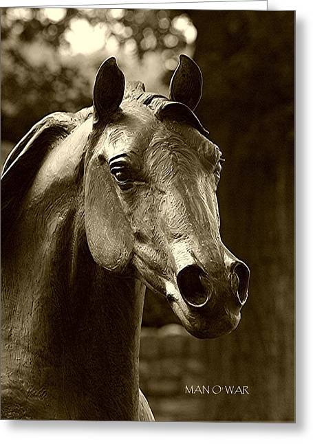 Race Horse Greeting Cards - Bust of Man O War - Kentucky Horse Park Greeting Card by Thia Stover