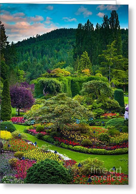 Butchart Gardens Sunset Greeting Card by Inge Johnsson