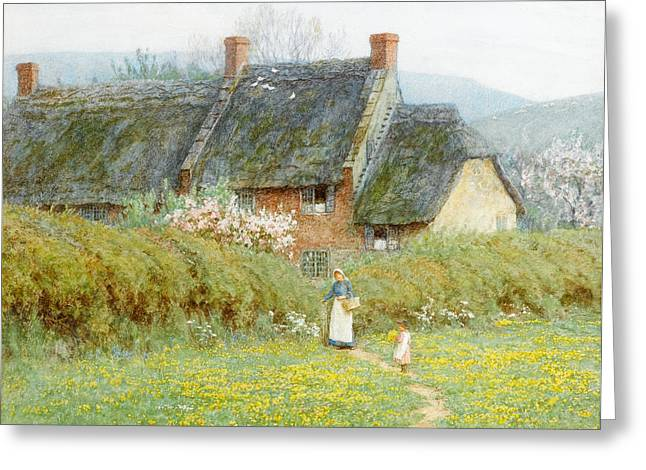 Buttercups Greeting Card by Helen Allingham