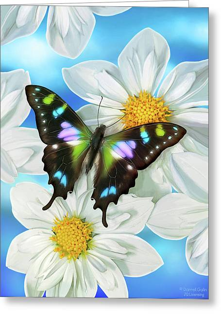 Song Bird Greeting Cards - Butterfly 2 Greeting Card by JQ Licensing