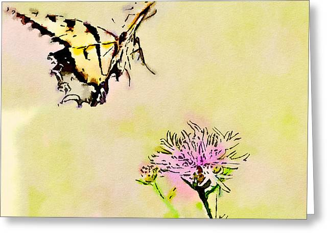 Floral Digital Art Greeting Cards - Butterfly Art - Tiger Swallowtail On Approach Greeting Card by Kerri Farley