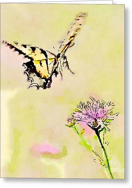Tiger Swallowtail Digital Art Greeting Cards - Butterfly Art - Tiger Swallowtail On Approach Greeting Card by Kerri Farley