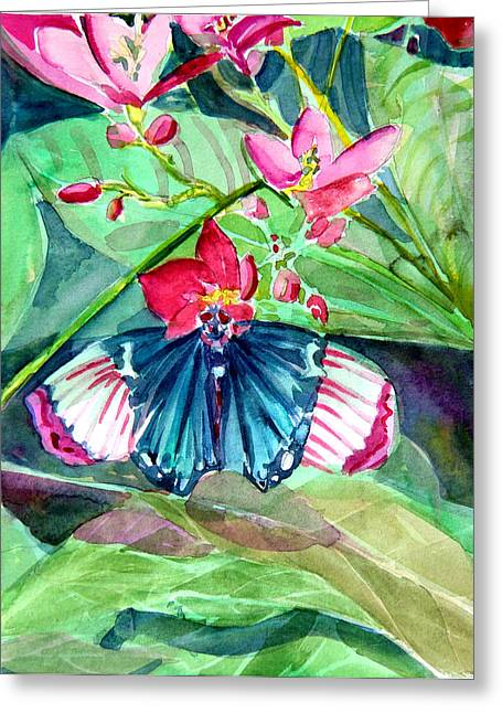 Franklin Drawings Greeting Cards - Butterfly Buffet Greeting Card by Mindy Newman