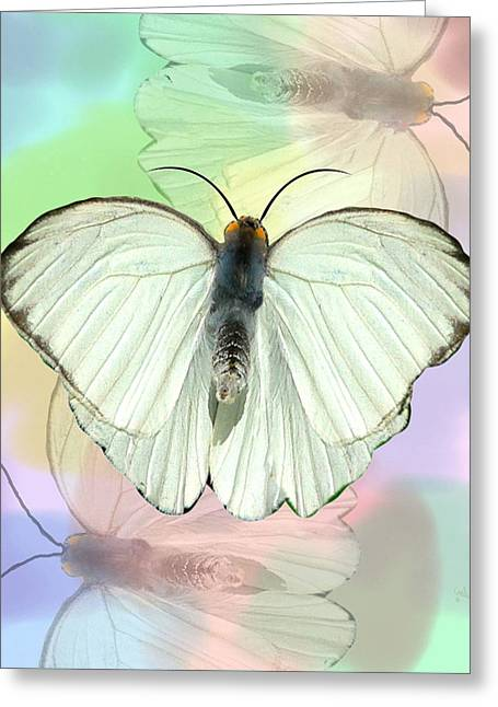 Morph Greeting Cards - Butterfly, Butterfly Greeting Card by Rosalie Scanlon