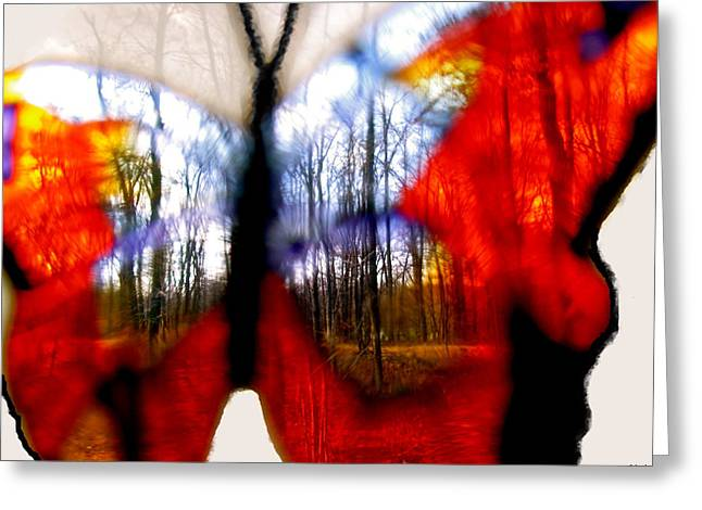 Photos Of Autumn Digital Greeting Cards - Butterfly Forest  C Greeting Card by Debra     Vatalaro
