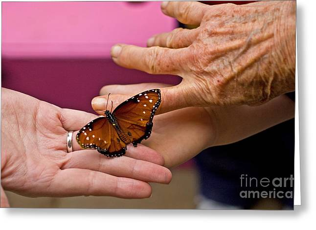 Elderly Hands Greeting Cards - Butterfly Hands Greeting Card by Ginger Harris