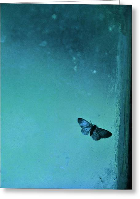 Gypsy Greeting Cards - Butterfly II Greeting Card by Valerie Rosen