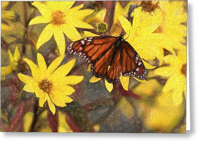 Butterfly In Flight Greeting Cards - Butterfly In Summer Greeting Card by Dan Sproul