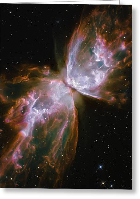 Butterfly Nebula Greeting Card by The  Vault - Jennifer Rondinelli Reilly