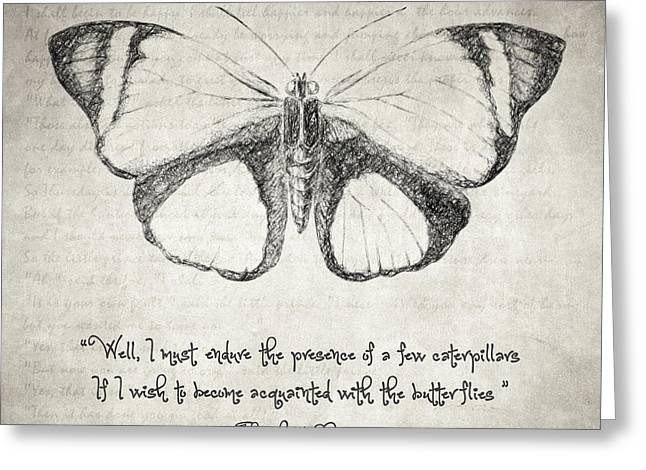 Written French Greeting Cards - Butterfly Quote - The Little Prince Greeting Card by Taylan Soyturk
