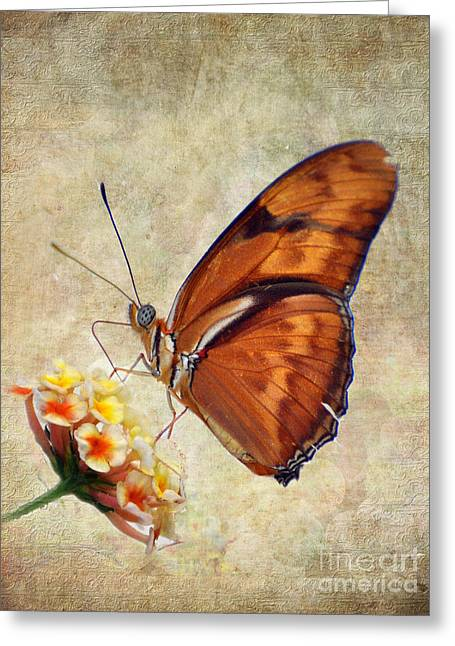 Close Up Pyrography Greeting Cards - Butterfly Greeting Card by Savannah Gibbs