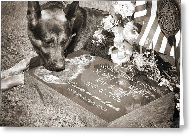 Artist Photographs Greeting Cards - Buy a print. Show your support for Reading K9 Police.  Willow Street Pictures.  Greeting Card by Darren Modricker