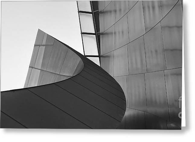 Stainless Steel Greeting Cards - BW Curves IV Greeting Card by Chuck Kuhn