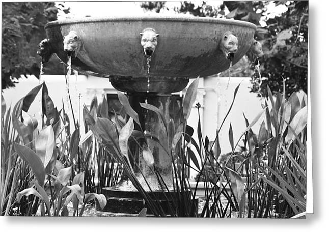 J Paul Greeting Cards - BW Fountain at the Getty Villa Greeting Card by Teresa Mucha