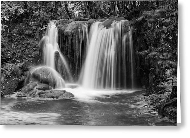 Roberto Greeting Cards - Jungle Waterfall BW Greeting Card by Jurgen Lorenzen