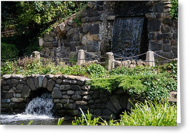 Flower Design Greeting Cards - By a waterfall  Greeting Card by F Helm