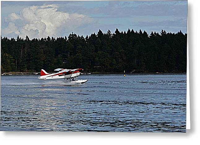 Car Carrier Greeting Cards - By Air and by Sea Vancouver Island Greeting Card by Barbara St Jean