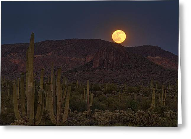 The Superstitions Greeting Cards - By The Light of the Strawberry Moon  Greeting Card by Saija  Lehtonen