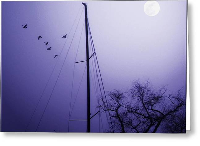 Artistic License Greeting Cards - By The Pale Moon Greeting Card by Brian Wallace