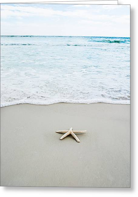 Star Fish Greeting Cards - By the Sea Greeting Card by Shelby  Young