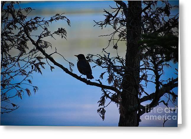 Eerie Greeting Cards - Bye Bye Birdie Greeting Card by Lisa Kilby