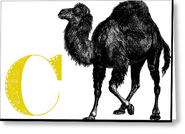 C Camel Greeting Card by Thomas Paul