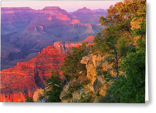 Canyon Allure Greeting Card by Mikes Nature
