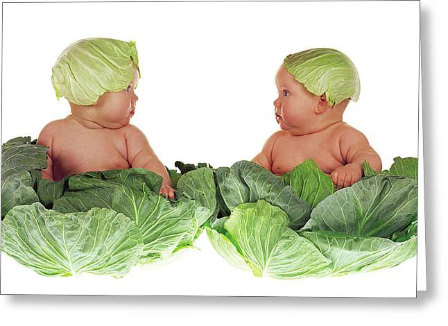 Kid Greeting Cards - Cabbage Kids Greeting Card by Anne Geddes