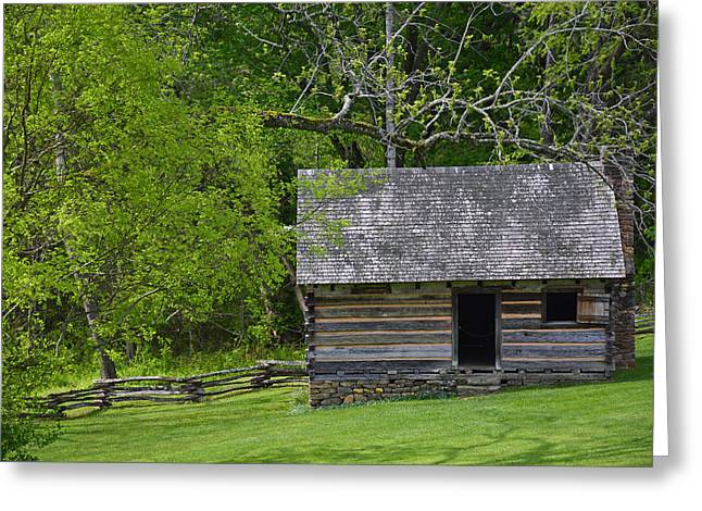 Old Cabins Greeting Cards - Cabin at Zebulon Vance Birthplace Greeting Card by Bruce Gourley