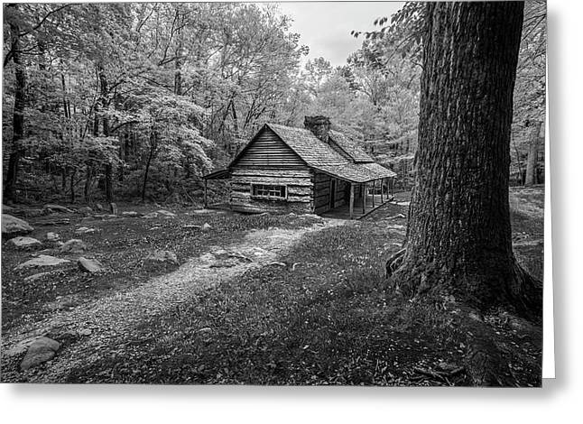 Cabin In The Cove Greeting Card by Jon Glaser