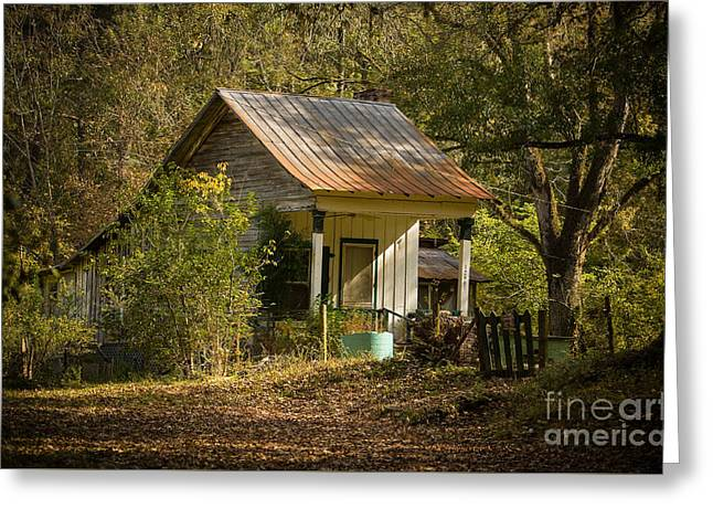 Off The Grid Greeting Cards - Cabin In The Woods Greeting Card by Knapp Lucia