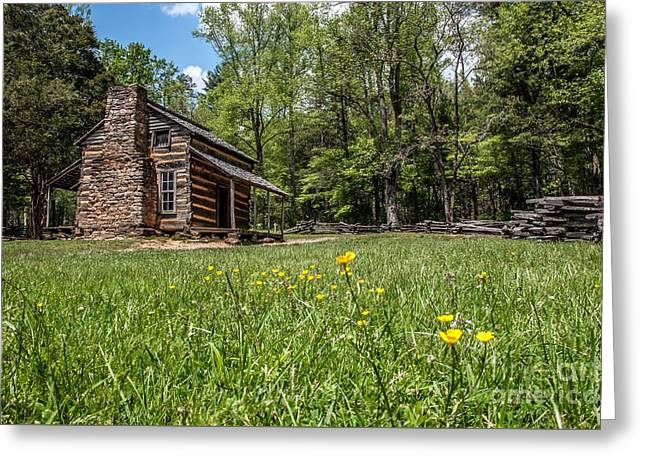 Log Cabins Framed Prints Greeting Cards - Cabins in the Spring Greeting Card by Debbie Green