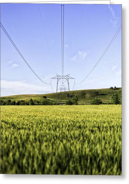 Colusa Greeting Cards - Cables and Wheat Greeting Card by Blake Westmoreland